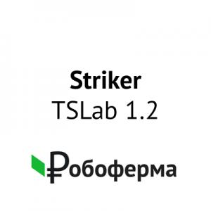 Товар-робот-Striker